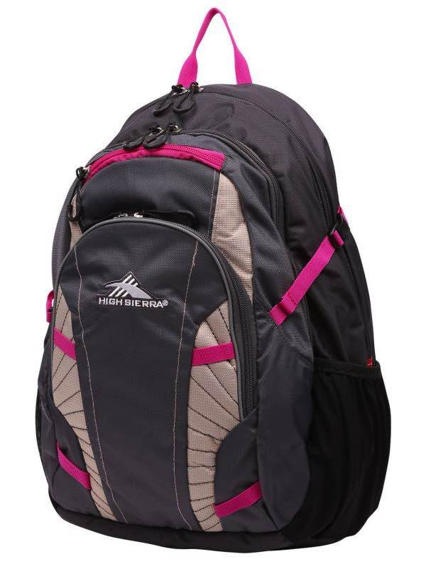 be6059d5a8 Zoe : Laptop Backpack - Charcoal / Fuschia : High Sierra